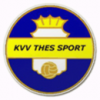 logo Thes Sport