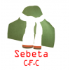 logo Sebeta City
