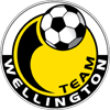 logo Team Wellington
