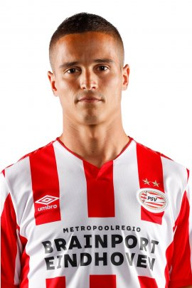 photo Afellay